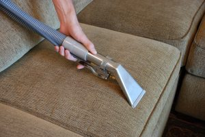 Upholstery Cleaning of Sofa Cushion